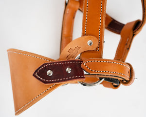 Beastmaster Adult Leather Saddle Bronc Halter Nose Band
