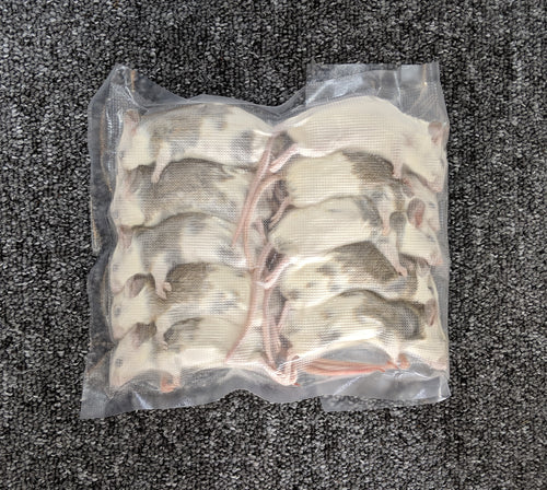 Large ASF's / Multis - Pack of 10