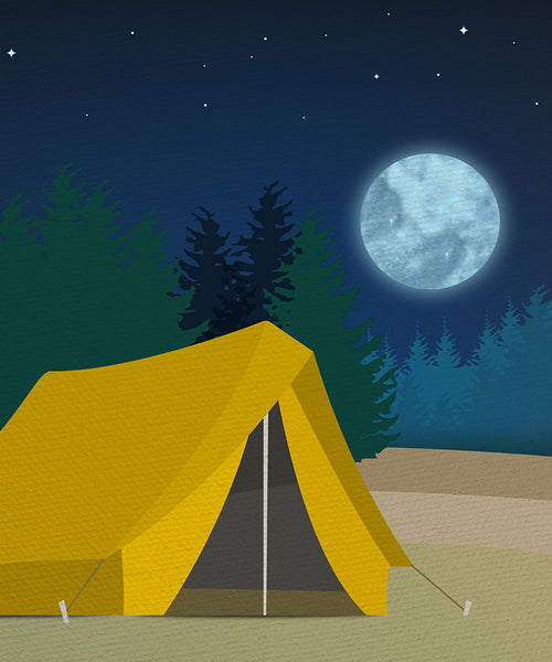 Camp Out Backdrop - The Backdrop Store