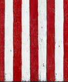 Red Striped Backdrop