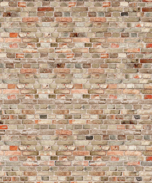 Old Brick Photography Backdrop - The Backdrop Store