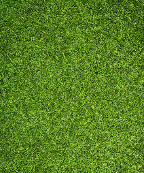 Grass Floormat - The Backdrop Store