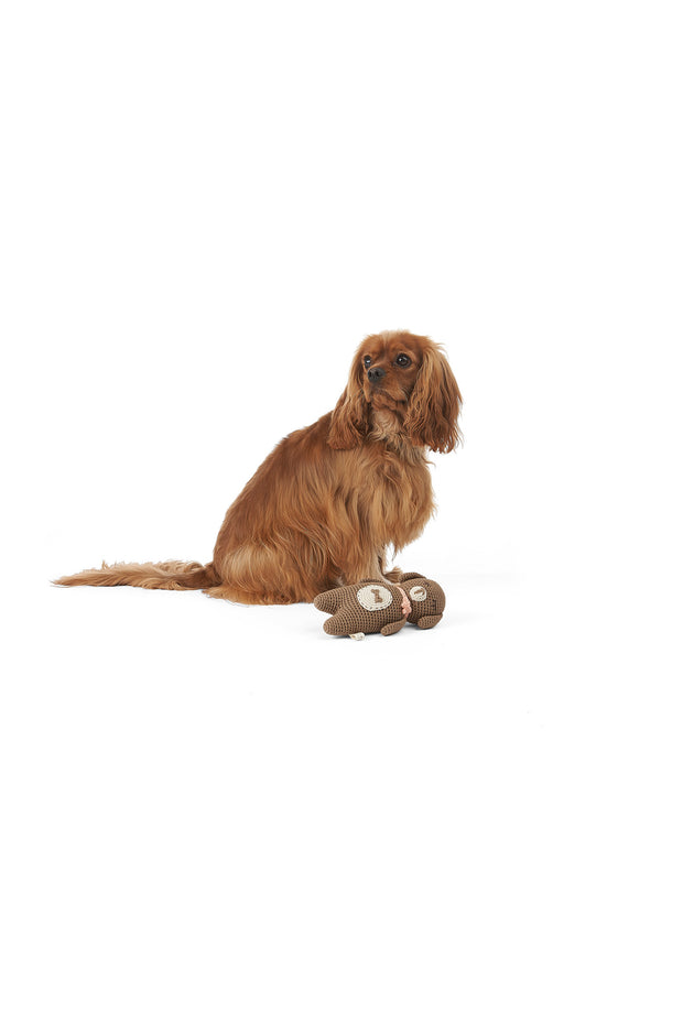 Mungo & Maud Faithful Friend Dog Toy