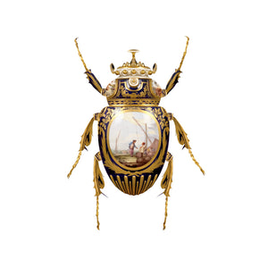 Sèvres Goliathus Scarabaeidae, limited edition print by Magnus Gjoen for the Wallace Collection