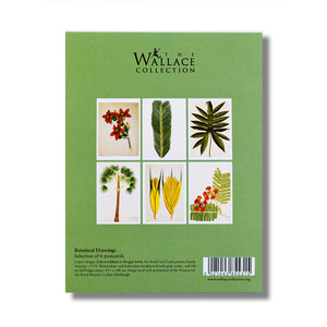 Forgotten Masters Botanical Postcard Pack