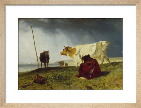 Cattle in Stormy Weather print