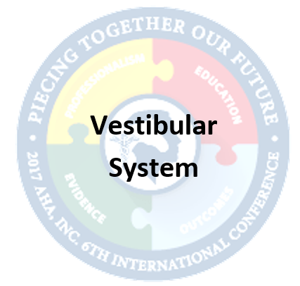 Vestibular and Visual Systems and Considerations for Hippotherapy