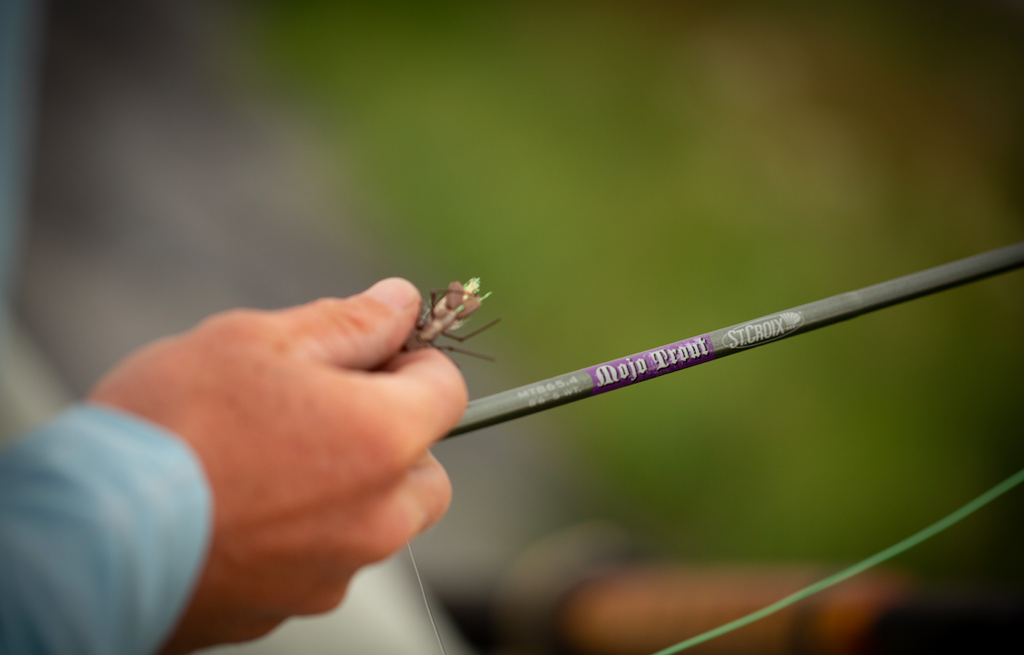 Mojo Trout Fly Wins Best New Fly Rod ICAST 2018