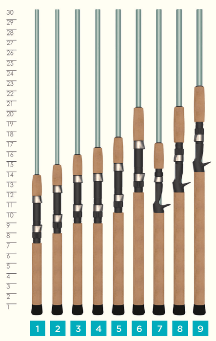 AVID SERIES® INSHORE SPINNING RODS
