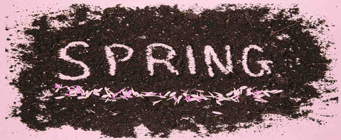 spring MARCH – THE MONTH OF SPRING