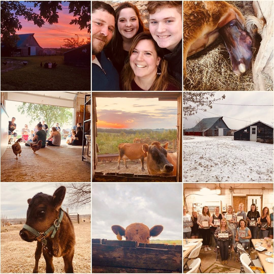 Happy 2020! The Little Red Farm 2019 Year in Review....