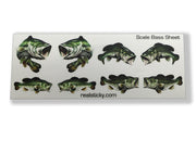 Bass Fish Scale Sheet