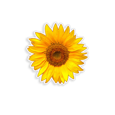 Sunflower - Yellow 4 inch