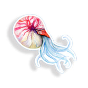 Watercolor Squid Sticker