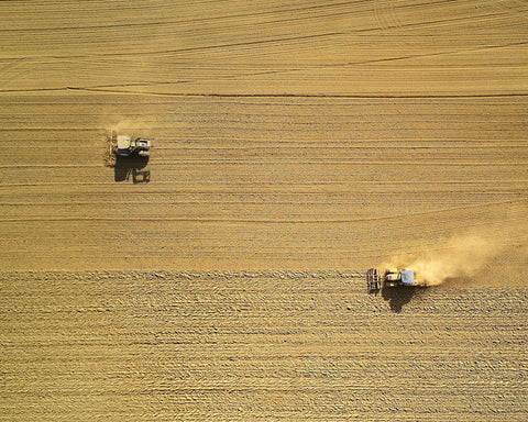 Humans plowing field