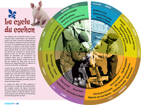 [013] Le cycle du cochon