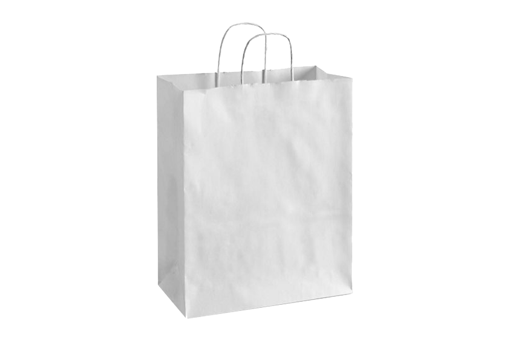 Paper Shopping Bags with handle, WHITE,  10x5x13  250 pcs