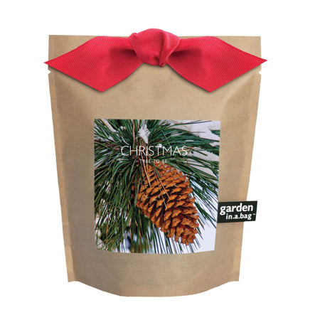 Potting Shed Creations - Christmas Tree Garden in a Bag