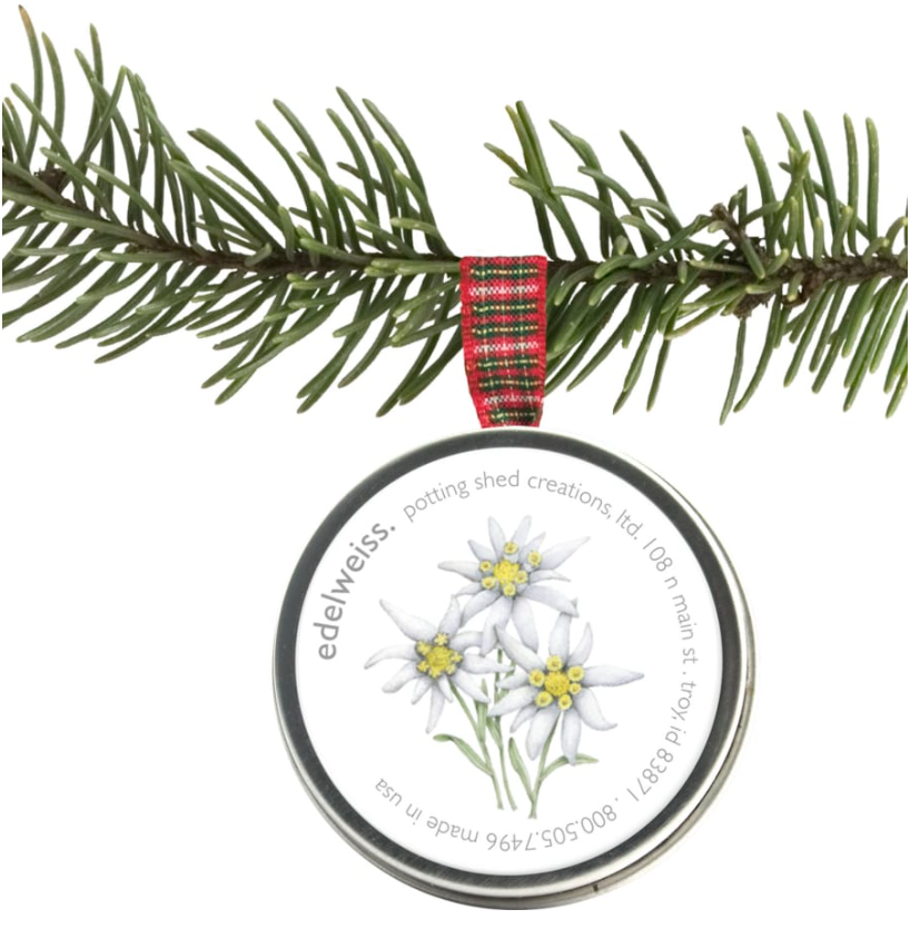 Edelweiss Seeds - Holiday Ornament