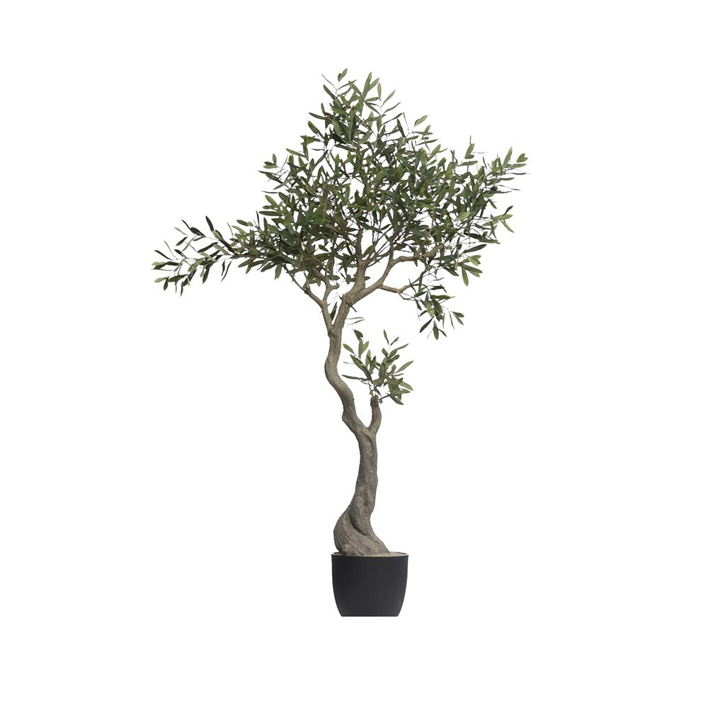 "We love the twisted, natural look of this Faux Olive Tree in Pot. Place in your bedroom, office, or other area and watch the space come to life!   Height: 60.25""H"