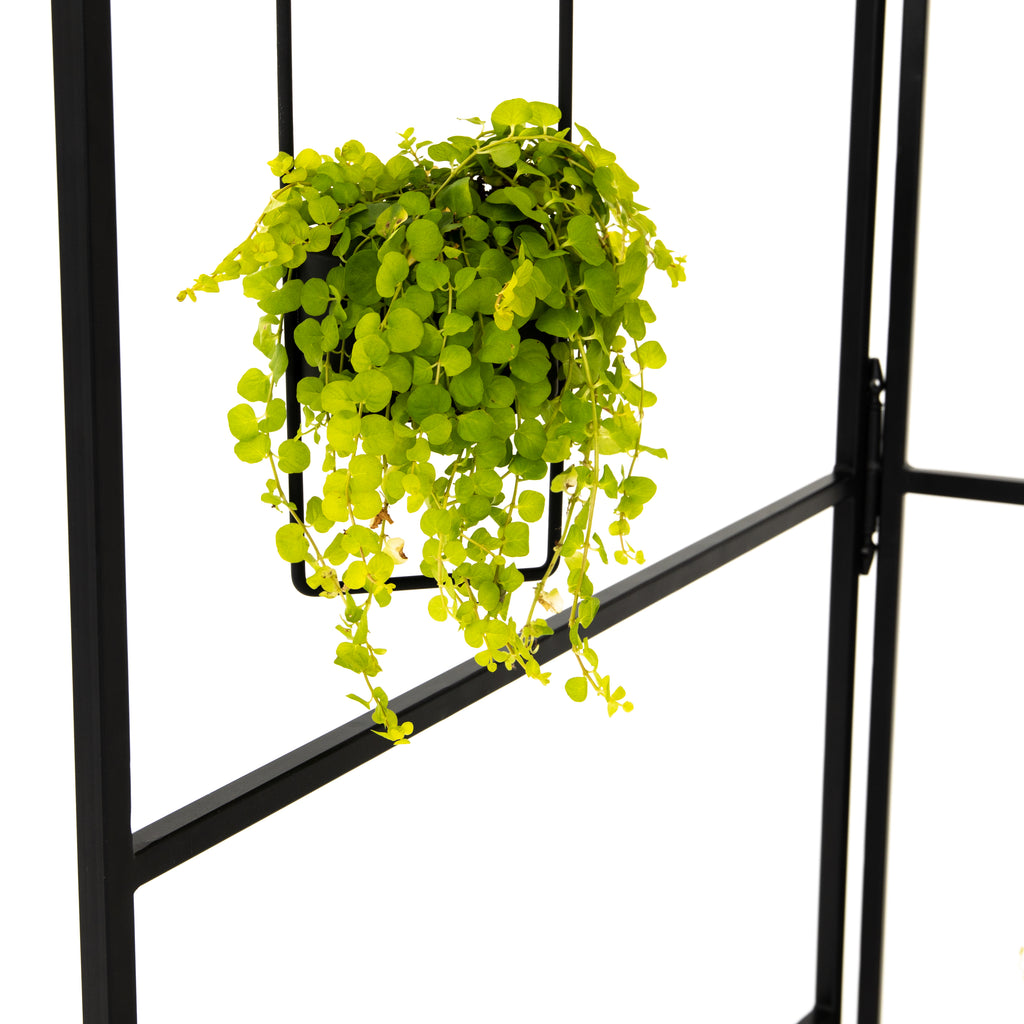 A folding screen of slim, satin black-finished iron stands ready to welcome hanging plants or flowers. Safe for outdoor spaces. Cover or store indoors during inclement weather and when not in use. Hangers not included.
