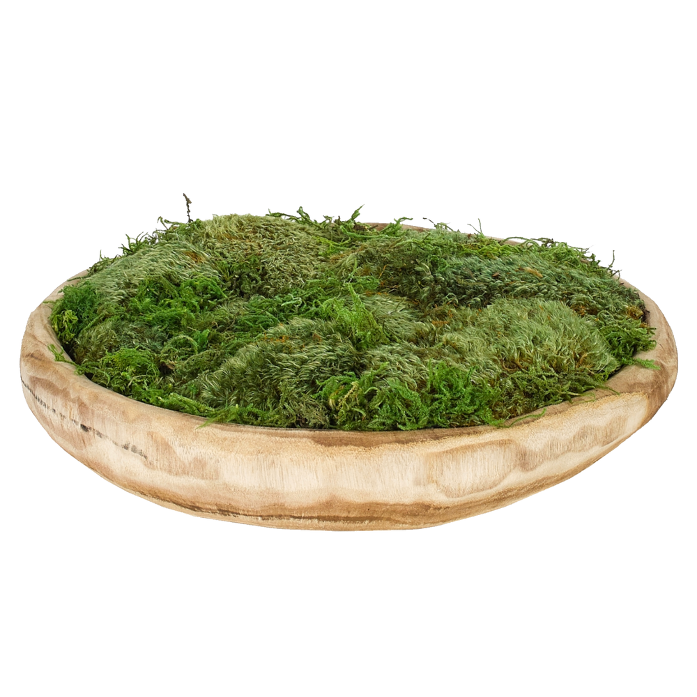 Large Moss Bowl - Amethyst Home