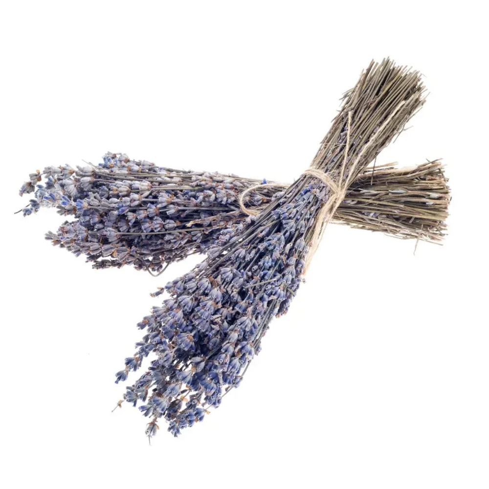 Dried French Lavender Bundles - Amethyst Home