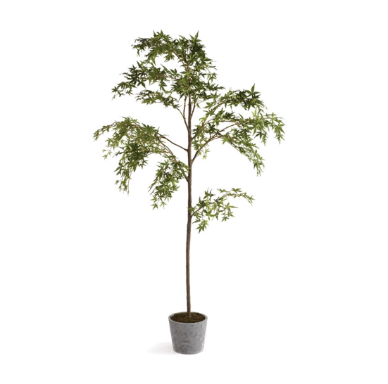 "A natural wonder is found with this Maple Tree in 84"" Pot. So realistic in form and color- you'll look twice to see if they're real. Brings any room to life!"
