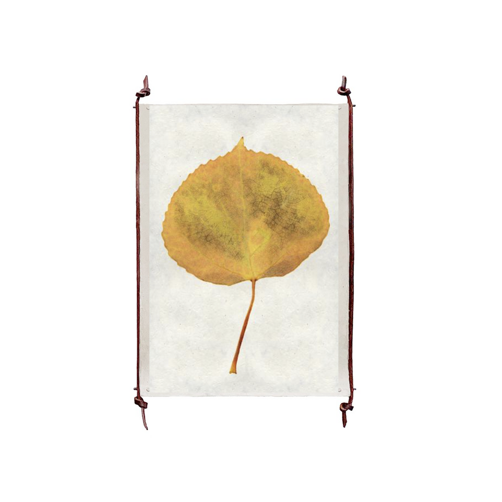 This Aspen is made from raw edge handmade paper from Nepal. Hang in your kitchen, living room, or bedroom to bring the space some organic, raw character!  Fine art prints  Pencil signatureThis Aspen is made from raw edge handmade paper from Nepal. Hang in your kitchen, living room, or bedroom to bring the space some organic, raw character!  Fine art prints  Pencil signature