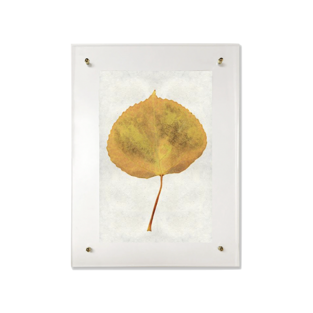 This Aspen is made from raw edge handmade paper from Nepal. Hang in your kitchen, living room, or bedroom to bring the space some organic, raw character!  Fine art prints  Pencil signature