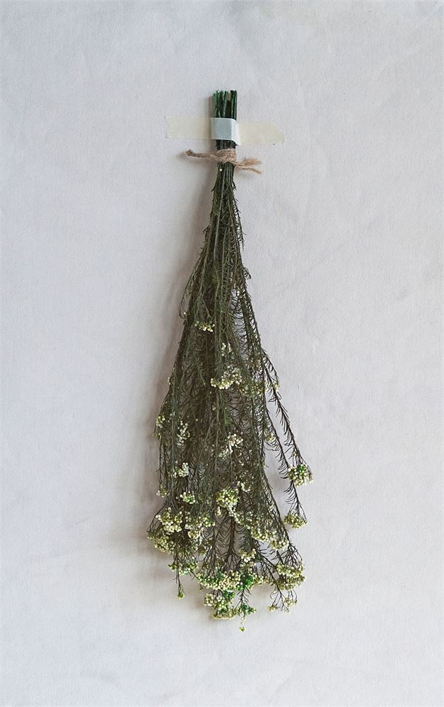 Pops of green in any moment are easy with this Sago bush. These fit wonderfully in a vase, across a platter, hangin on a wall, placed on a mantle, or anywhere else!