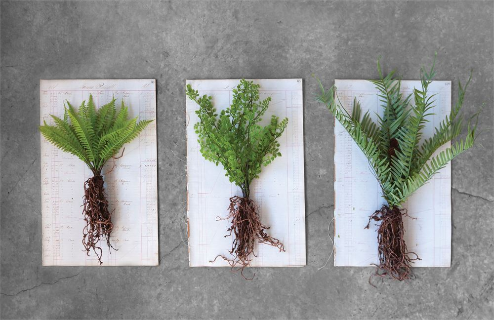 These faux ferns with exposed roots are a striking way to display the entire plant system in a fun way. These ferns can be displayed in a vase, across a platter, mixed together with flowers, as an abstract display on a wall, or any number of ways!