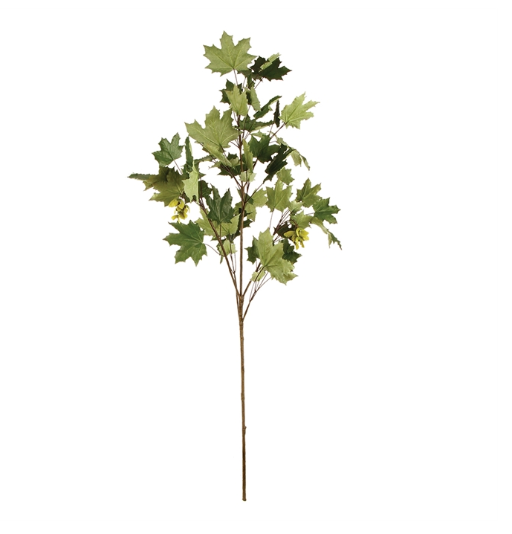 "When added to an arrangement, greenery can add vibrance and life to your space. In a range of green hues and an unmistakable shape, the Maple Leaf 52"" Branch  is a divine touch."