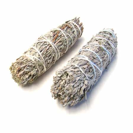 "Blue sage smudge stick 4"" (Salvia azurea)"