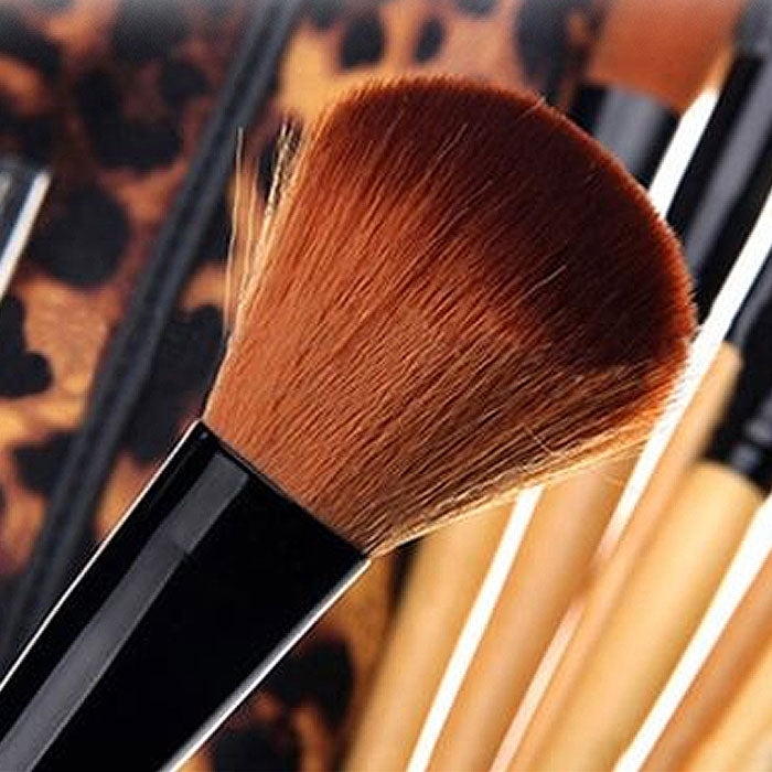 12-Piece : Makeup Brush Set with Case