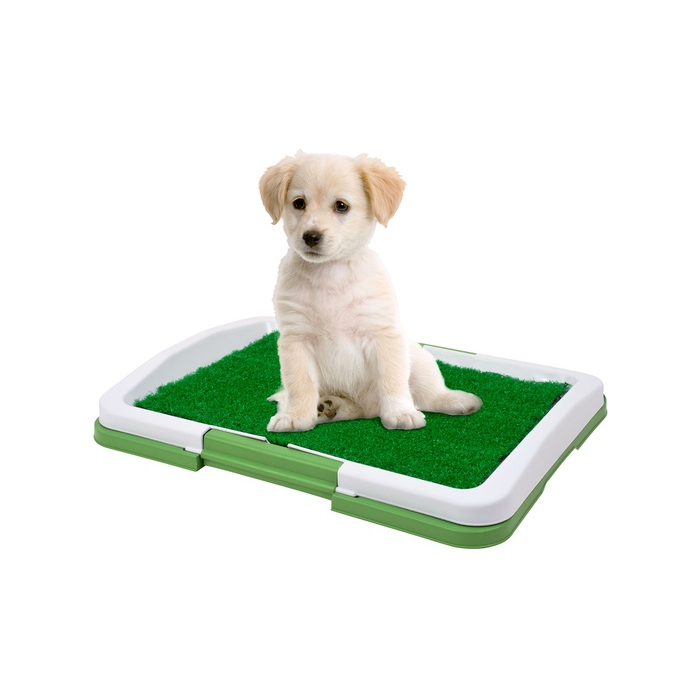 Puppy Potty Trainer: The Indoor Restroom for Pets