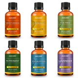 Essential Oil Gift Set with Top 6 Blends