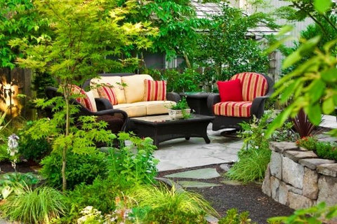 couches outside a home surrounded by plants