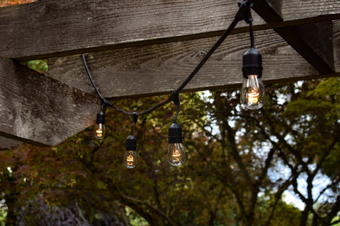 lack light bulbs in a string hanging in a wood