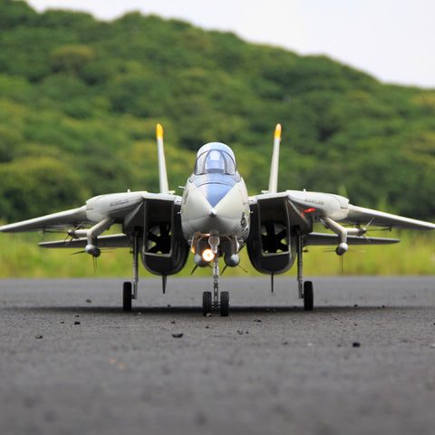 Freewing Dual 80mm rc airplane jet model F-14 Tomcat with Variable Sweep Wing KIT with servos