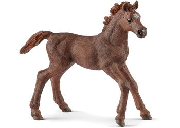 Schleich 13857 English Thoroughbred Foal