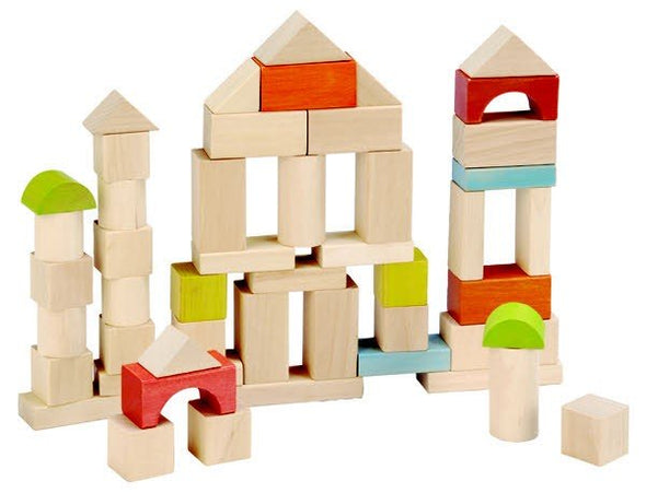Everearth 50 piece Block Set