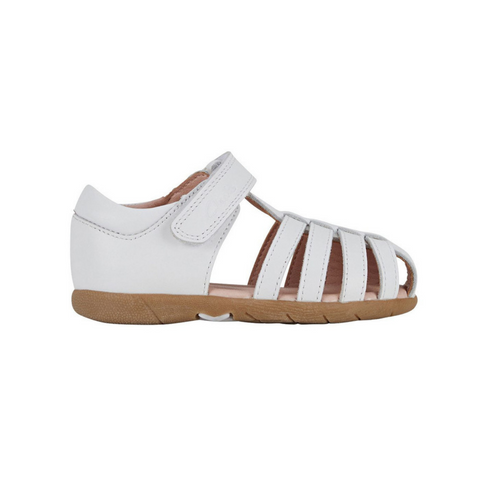 SHELLY E CLARKS - WHITE
