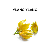 YLANG-YLANG Essential Oil - 10 ml
