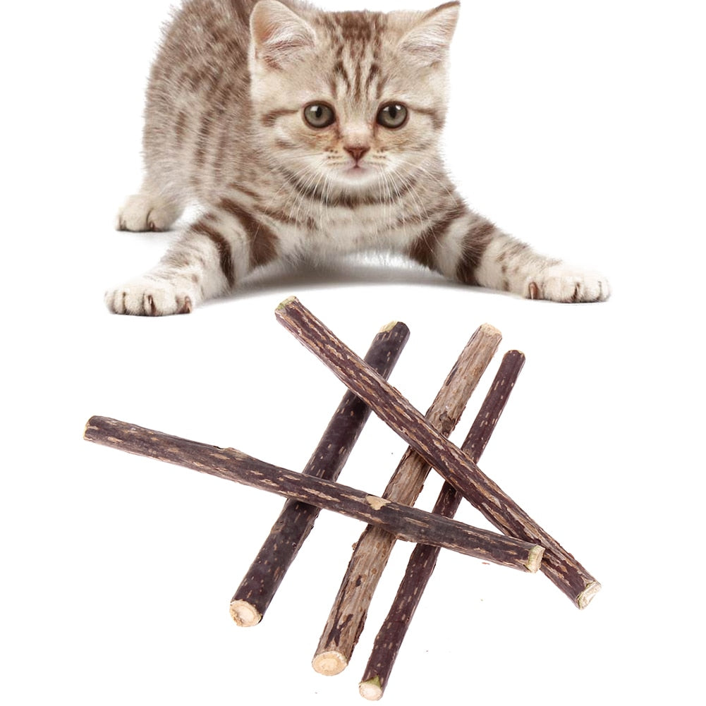 5 x Pure Natural Catnip Teeth Cleaning Sticks