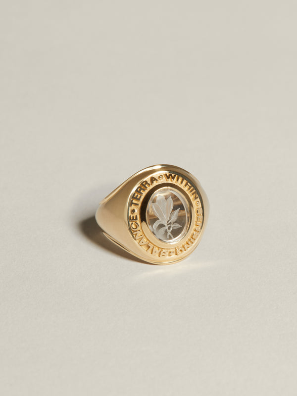 Class Ring Earth (Magnolia)