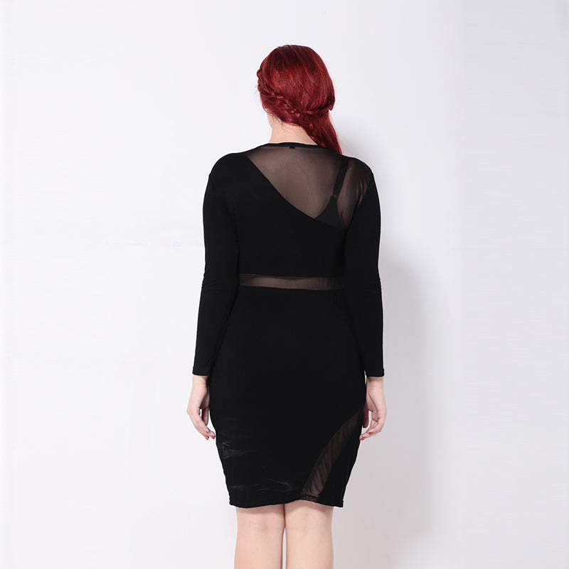Plus Size Sheer Long Sleeve Slim Dress LAVELIQ - Laveliqus