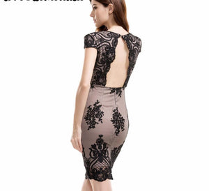 Black Lace V-Neck Drain Back Party Dress LAVELIQ - Laveliqus