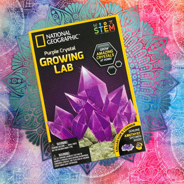 National Geographic Growing Lab - Purple Crystal