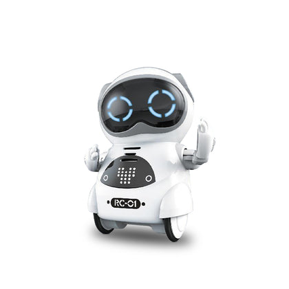 Pocket RC Robot Talking Interactive Dialogue Voice Record Singing Dancing